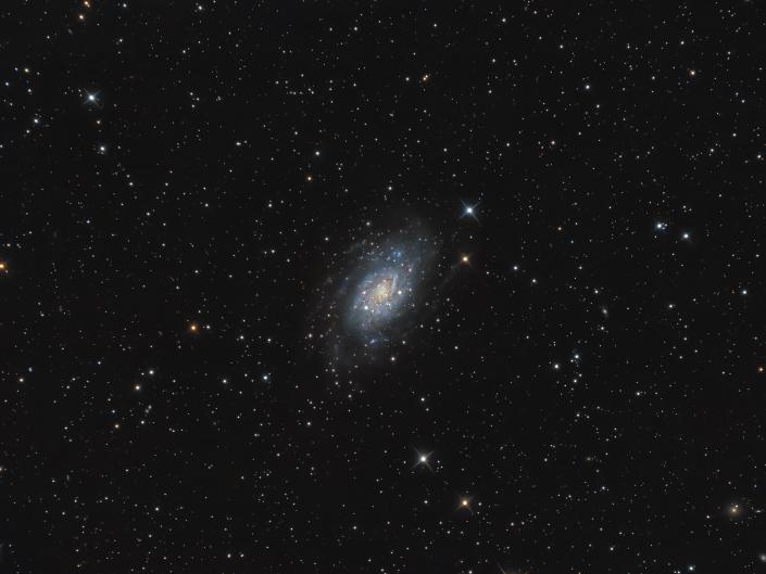 Galassia NGC 2403 nella costellazione della Giraffa si trova una grande galassia distante più di 8 milioni di anni luce da qui. SW 200/800   AZEQ6-GT Optolong L-pro ASI 294 Remotizzato con Cartes du Ciel ed elaborato con Pixinsight e Photoshop.